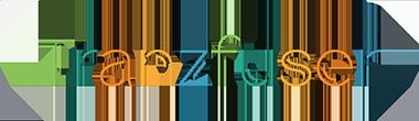 Tranzfuser logo